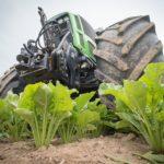 Nová dotace na cukrovou řepu zlepší životní prostředí a péči o krajinu